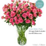 Miflora Rosen-Ralley: 20 Nathalie Rosen mit 140 Blüten für 17,90€ inkl. Versand