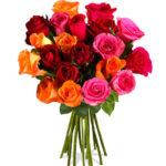 Blumenstrauß Pia mit 20 Rainbow-Rosen für nur 14,90€ inkl. Versand