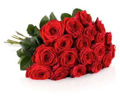 rosen blumenstrauß günstig angebot aktion