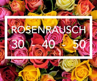 rosenrausch