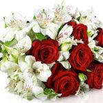 Blumenstrauß Gloria mit 7 roten Red Naomi Rosen und Alstromerien für 17,90€ inkl. Versand