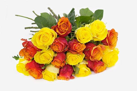 Rosen Bunt Strauß Florist günstig online kaufen Blumenversand Rosenversand